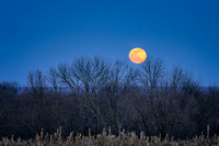 March full moon rising