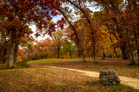 Oak Trees and Indian Mounds 2