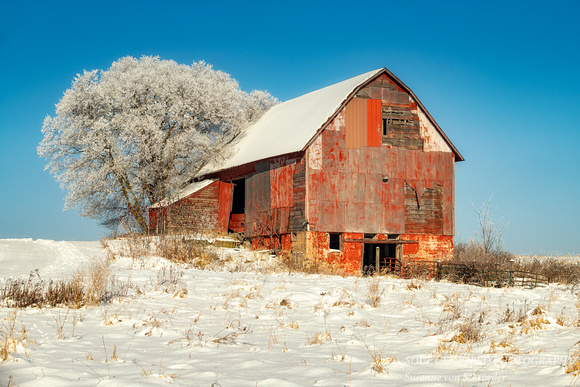 Red barn sparkling on a winter day