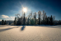 Frosty landscape, sunny day - Audie Lake 3