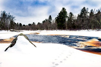 Flambeau River with turkey tracks