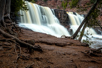 Gooseberry Falls with Cedar trees, spring